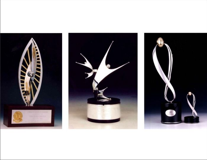 Like the ideas trophies pinterest for How to design a trophy
