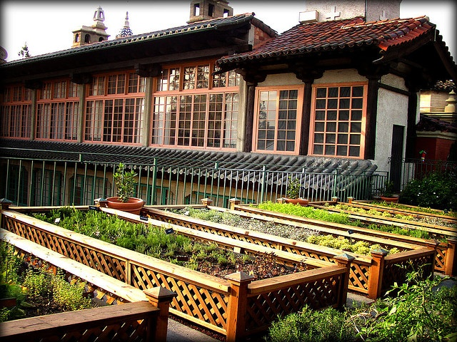 Rooftop garden @ The Mission Inn, Riverside CA: Rooftops Gardens, Rai Herbs, Herbs Beds, Raised Beds, Beds Rooftops, Beautiful Gardens, Photo, Rooftop Gardens, Rai Beds Lattices
