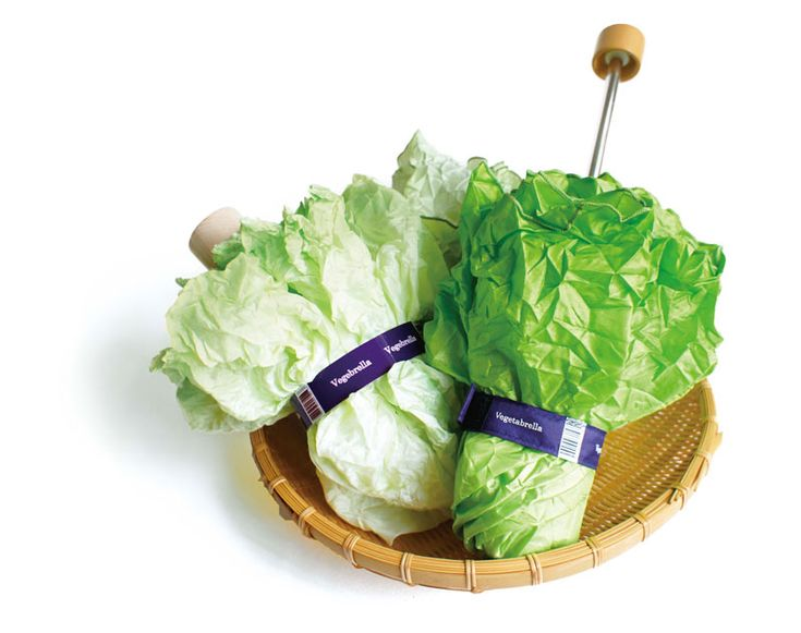 レタスの傘 - Lettuce umbrella