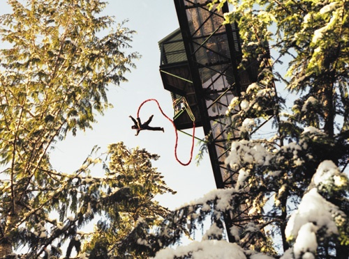 First time my husband told me he loved me... Whistler Bungee... never forget it!