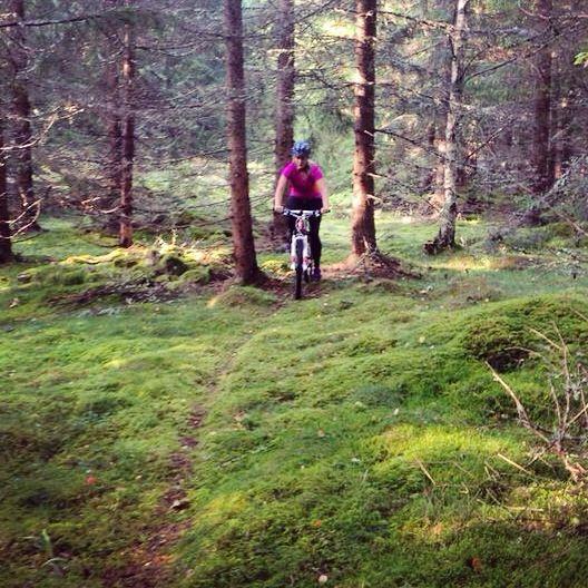 Skogscykling med mountainbikes på djurstigar och grusvägar. Med guide och avslutas med vedeldad bastu eller bubbelpool.