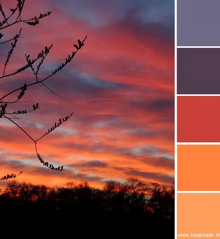 de Haakbaak: Kleur je weekend: natuurtinten zonsondergang
