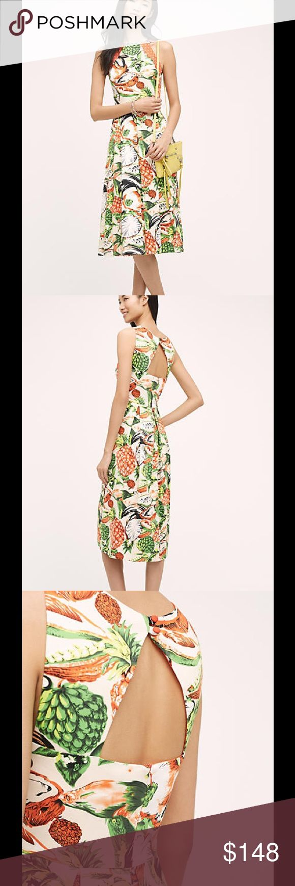 Eva Franco Pineapple Halter Dress Cotton, elastane Fit-and-flare silhouette Side zip Dry clean Made in USA Eva Franco Dresses Midi