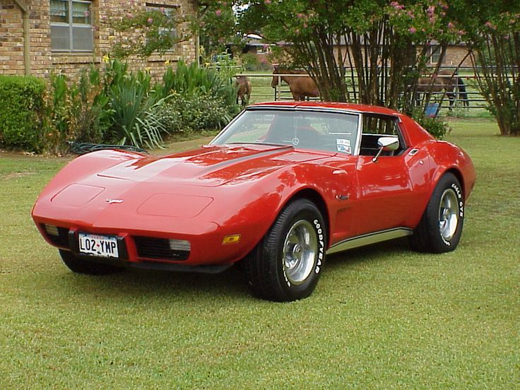 1975 Corvette Stingray ...My cousin would come get me and my brother and sister in it. Dont know how we fit.