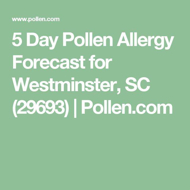 5 Day Pollen Allergy Forecast for Westminster, SC (29693) | Pollen.com