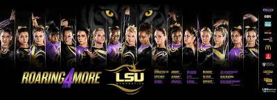 2013-14 LSU Gymnastics Poster
