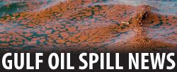 Latest Gulf Oil Spill news ... BP refuses to pay for more research on Deepwater Horizon oil spill effects on dolphins, turtles, oysters