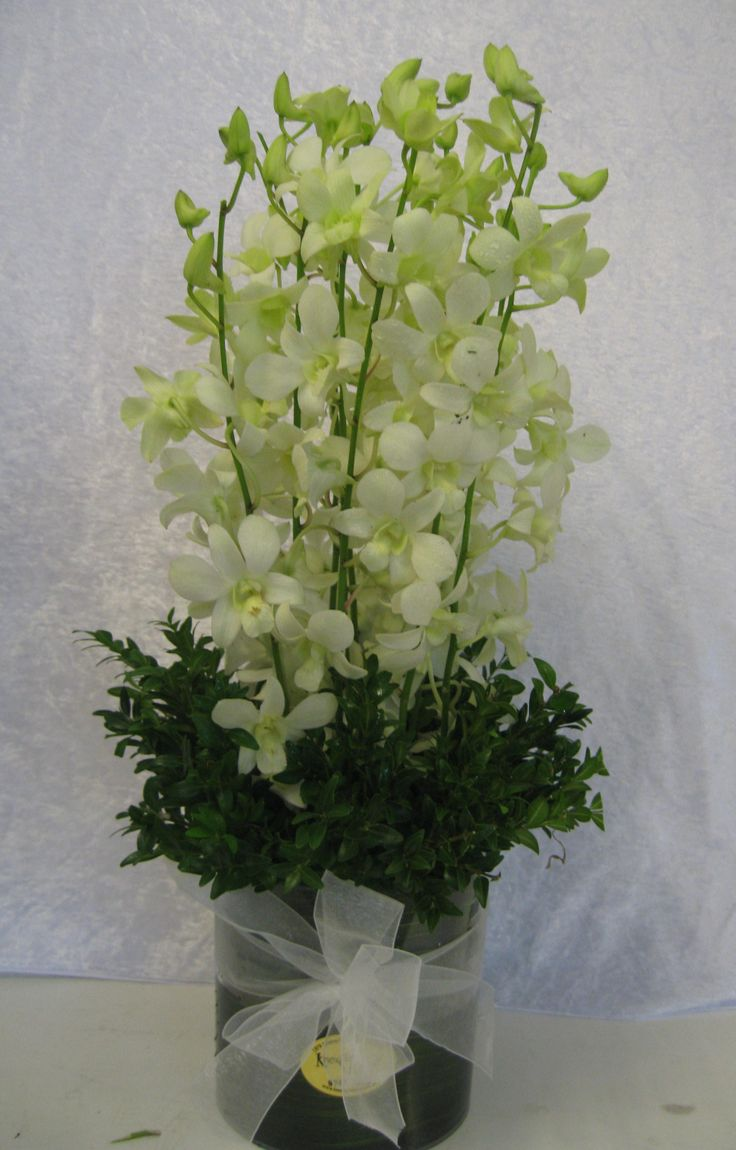 A beautiful long-lasting design of White orchids in a glass vase.