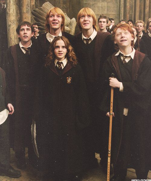 Harry Potter, Fred & George Weasley, Ron Weasley, Neville Longbottom and Hermione Granger