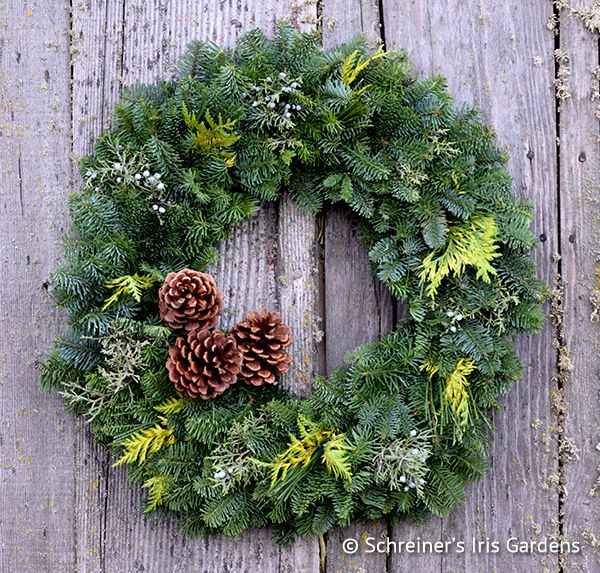 12-inch wreath, includes 3 fresh pine cones (as pictured). Fresh evergreen boughs from the forests above the Willamette Valley in Oregon form these festive, hand-crafted, holiday wreaths. We ship...