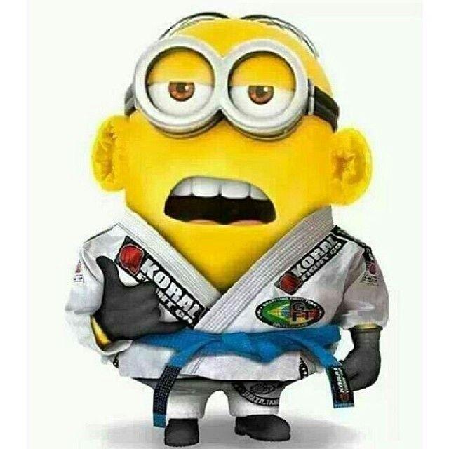 BJJ Minion. Blue belt with Cauli ears. I need glasses and a Koral Gi and I'm set for halloween.