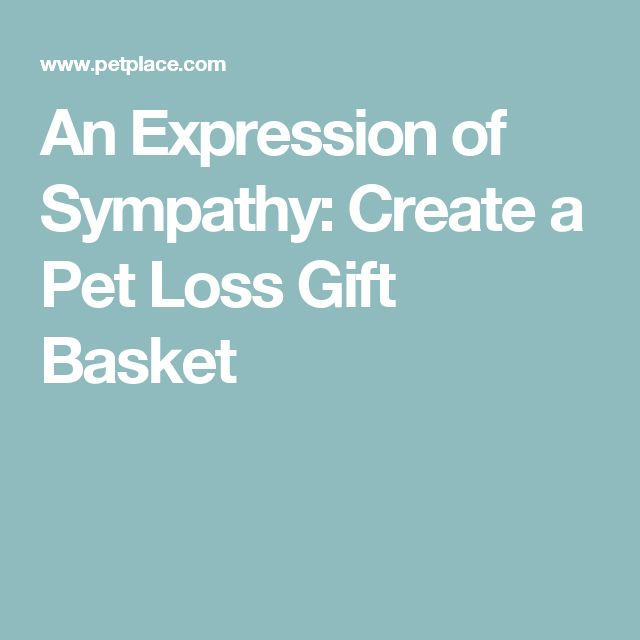 An Expression of Sympathy: Create a Pet Loss Gift Basket