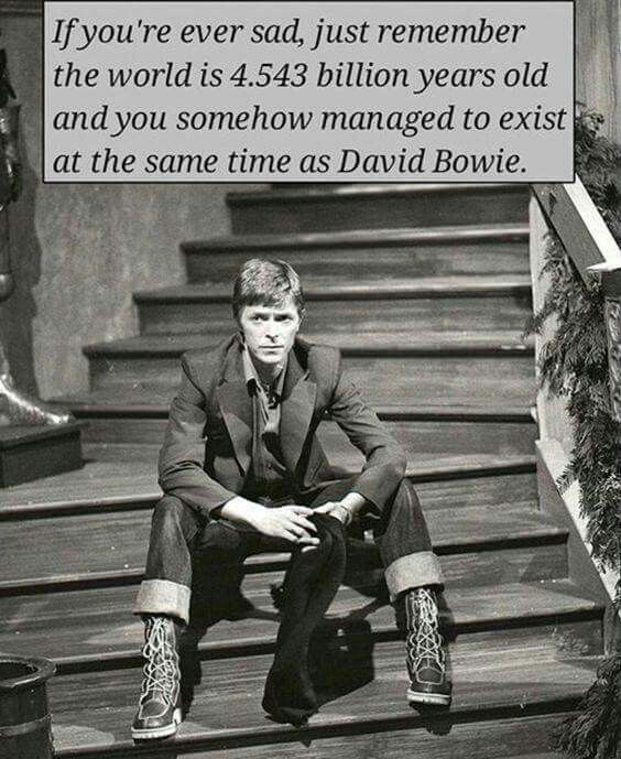 1000+ Images About David Bowie On Pinterest