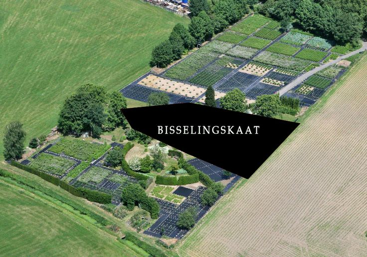Aerial view of nursery farm #Bisselingskaat, where organic cut #flowers are grown. The flowers are traded at the flower auctions #Plantion and #FloraHolland in NL.
