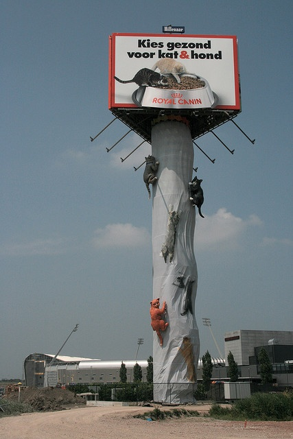 Giant Scratching Post    June 2007: A billboard was converted into a giant scratching post, with at least three cats, each more than four meters long, hanging on to it