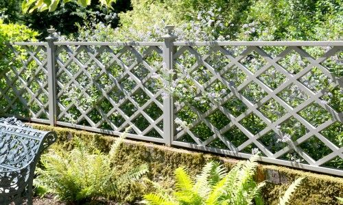 Image result for green wall top diamond trellis
