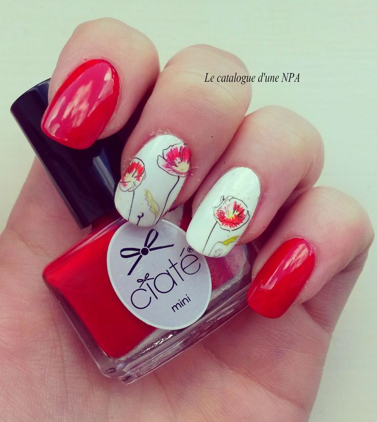 #nailart #npa #nailartist #nailstorming #notd #ciaté #rouge #red #coquelicot