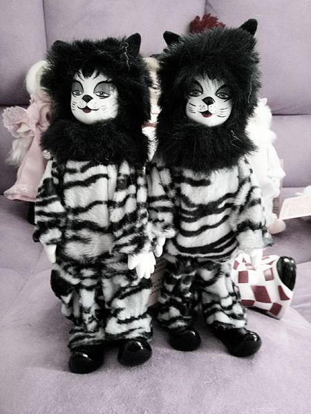 正版外贸尾货盒装 猫族 古董猫 狮子猫 20cm 摆件收藏