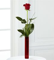 Hall S Gift And Floral Design Vicksburg Ms
