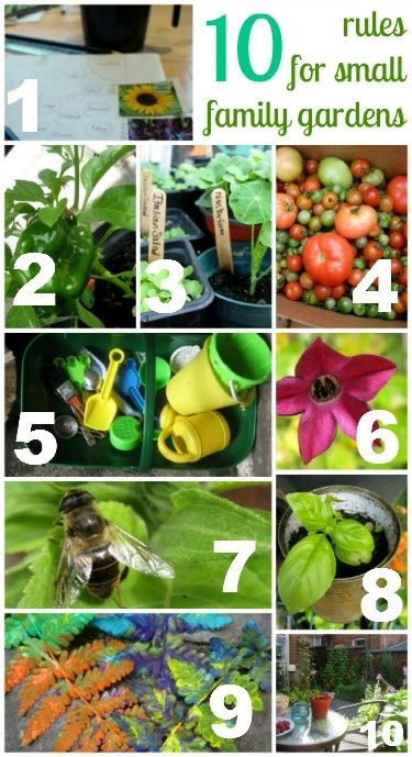 10 rules for small family gardens - fantastic ideas to make the most of the space. these will be good when we finally get our new apt and i can have a balcony garden!