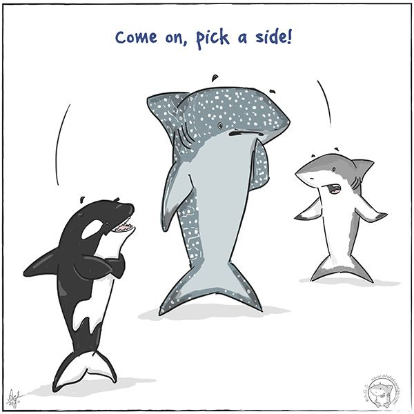 """Oh, Dakuwaqa!"" - The Shark comics and cartoons: Whale. Shark. Whale Shark."