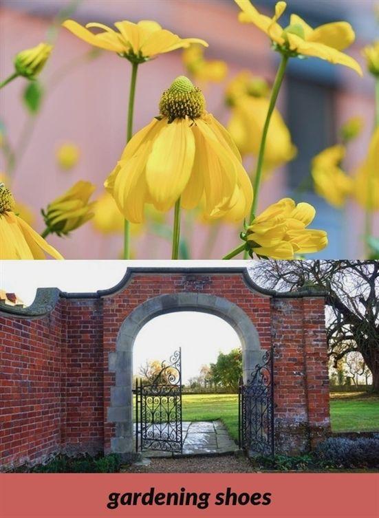 Craigslist Winter Garden - MISLI POKLAVE