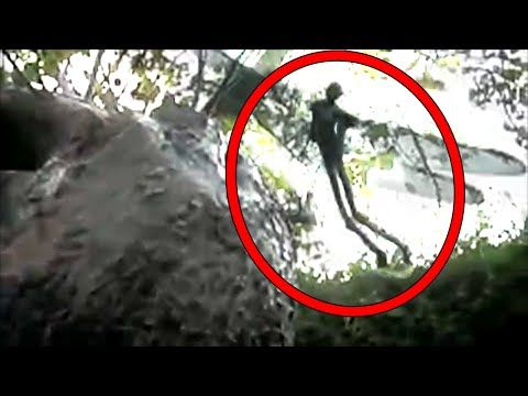 What you need to know about FLYING FAIRY DEMON CREATURES ...