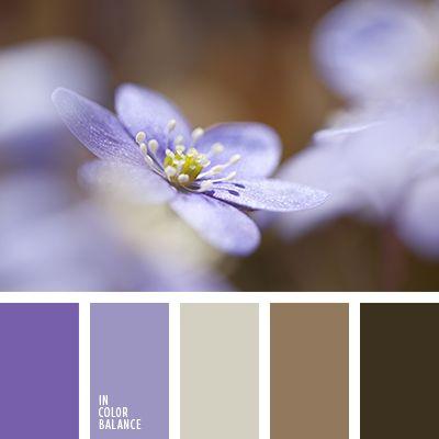 café con leche, chocolate, color lavanda, color violeta suave, de color púrpura, de lavanda, lechoso, marrón grisáceo, marrón oscuro, matices cálidos del marrón, morado, paleta suave para una boda de invierno, tonos lavanda, tonos marrones, tonos pastel para una boda, tonos