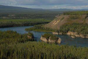 Vivre une expédition guidée en canot-camping sur le fleuve Yukon : 720 km à un rythme lent, en pleine nature sauvage! Une occasion exceptionnelle de découvrir la faune et la flore au plus près, d'explorer des villages abandonnées de la ruée vers l'or, d'écouter les récits incroyables sur les premiers explorateurs du fleuve. Photo Gouvernement du Yukon - www.goto-canada.be