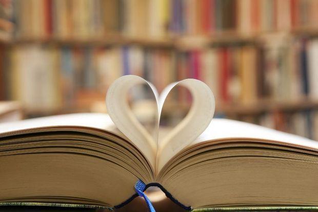 Hoewel Vlaamse en Nederlandse boeken vrij evenwichtig besproken worden in de media van beide gebieden, grijpt de Vlaamse en Nederlandse lezer veruit het liefst naar boeken uit het eigen deel van het Nederlandse taalgebied.