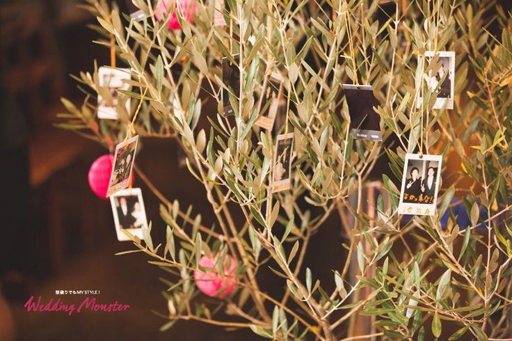 式のスタイルは『人前式』 ゲスト全員から写真にサインをもらい平和・夫婦のシンボルツリーであるオリーブの木にくくりつけてもらう、 これが二人の結婚証明書