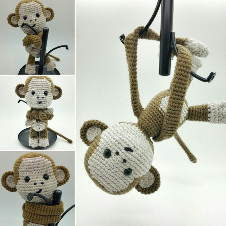 Bicolino baby monkey