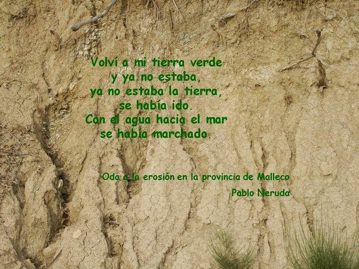 """Recursos para la Educación Ambiental: Oda a la Erosión en la provincia de Malleco de Pablo Neruda - En el poema """"Oda a la erosión en la provincia de Malleco,"""" de 1956, perteneciente a Nuevas Odas elementales, Pablo Neruda escribe esta hermosa oda a uno de los desastres de nuestra tierra, en la que el narrador habla a su tierra natal sobre la desaparición de lo que existía antes."""