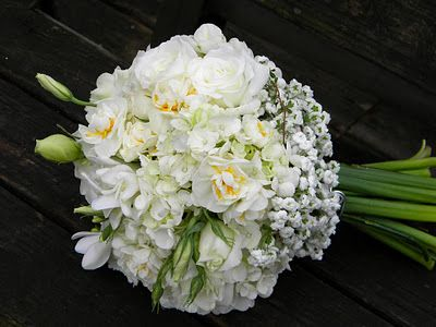 Wedding Flowers from Springwell: What's in a Name... Bridal Wreath Spirea and Bridal Crown Narcissus