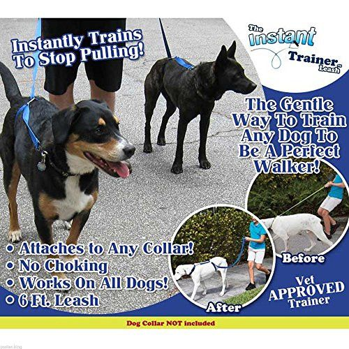 Instant Trainer Leash - #1 Vet Recommended Leash