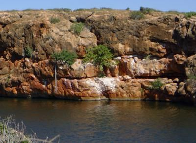 Yardie Creek: What a fantastic family camping holiday!!  In the beautiful Cape Range National Park in Exmouth there are several DEC campgrounds to chose from. This year