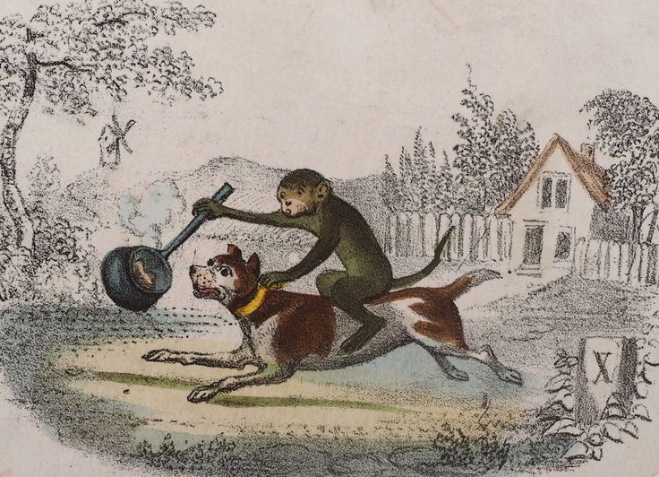 Antique 1840 engraving Monkey rides Pitbull Bully dog American Bull Terrier LUCK FOR SALE • $55.00 • See Photos! Money Back Guarantee. Wonderful engraving with a monkey riding a dog and holding a pan in front of the dog w a piece of bacon inside..The dog running to get this treat!! The 192262779456