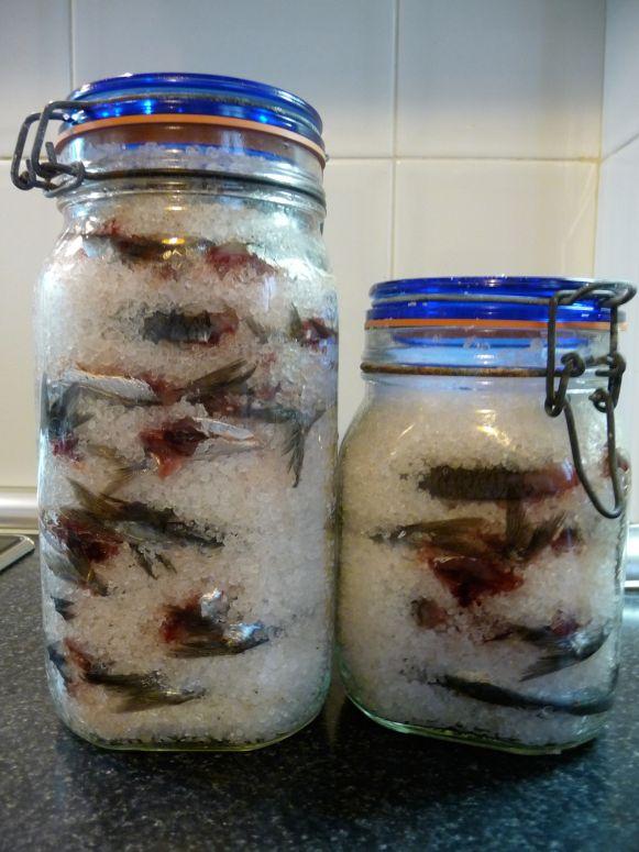 Me encantan las anchoas, tanto solas como para cocinar (las uso en un montón de salsas). Desde hace unos años cada verano hago anchoas y me duran más de medio año. No hay ni comparación con las que…