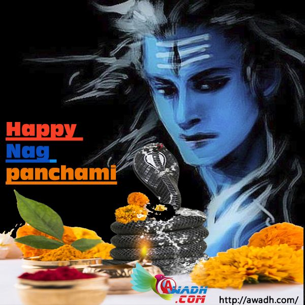 Nag Panchami is observed on the Shukla Paksha #Panchami during the Hindu calendar month of #Sawan. As per the Gregorian calendar #Nag #Panchami falls in month of July or #August. In 2016 Nag Panchami will fall on the 7th of August. Nag Panchami is celebrated two days after Hariyali Teej. On this day women pray for the well-being of their brothers and families. They worship the Nag Devta (serpent God) and offer milk to them. http://awadh.com/index.html