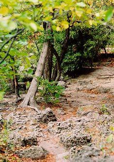 Ontario Conservation Areas & Authorities