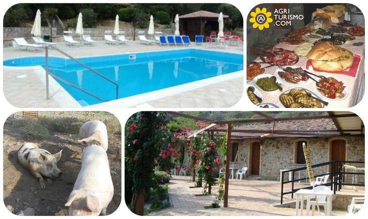 Prodotti fatti in casa, piscina, terrazza con panorama mozzafiato e fattoria con maialini e pecore. Tutto questo é Agriturismo San Fele. Hai già visto i nostri prezzi ?! CLICCA QUI: http://www.agriturismo.com/dettaglioAgriturismo_alloggi.asp?idLingua=1&id=738 #prodotti #fattoria #agriturismo #eataly #italia #italy #calabria #piscina #terrazza #panorama #paesaggio #vacanze #calabria
