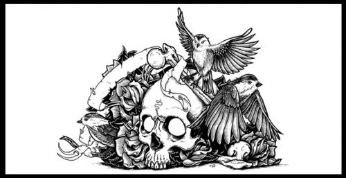 bird skull tattoo - Google Search