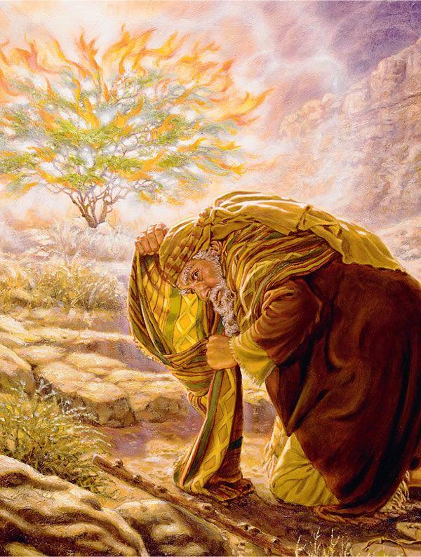 Honremos el gran nombre de Jehová — BIBLIOTECA EN LÍNEA Watchtower