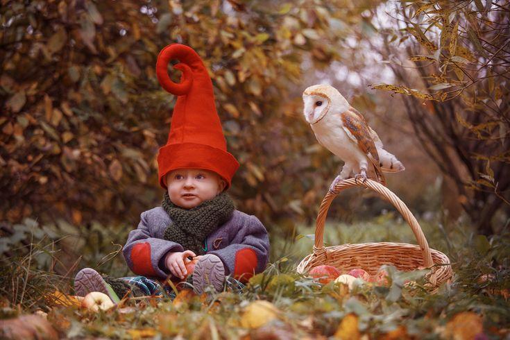 осень в картинках гном схеме указаны только