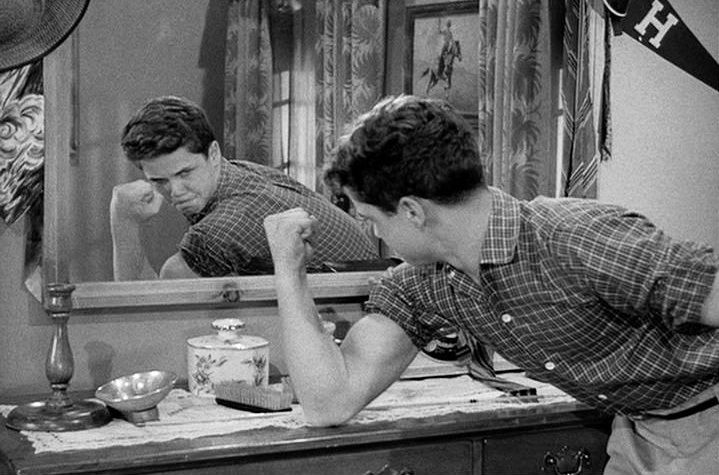 Playing the big brother to The Beaver, Tony Dow did a great job acting throughout this series. What makes his performance even more impressive is that this was his first major acting role and he was actually discovered while working as a lifeguard.