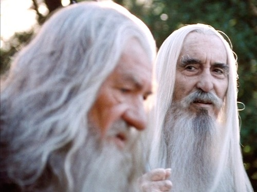 Saruman the White  leader of the Istari, wizards sent to Middle-earth in human form by the godlike Valar to challenge Sauron. Gandalf's relationship with Saruman, the head of the Order, was strained. The Wizards were commanded to aid Men, Elves, and Dwarves, but only through counsel; it was forbidden to use force to dominate them—an injunction Saruman disregarded.