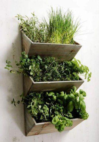 Comment faire pousser un potager dans un appartement - Comment faire un jardin vertical ...