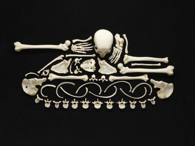 Human Bone Anti-War Art