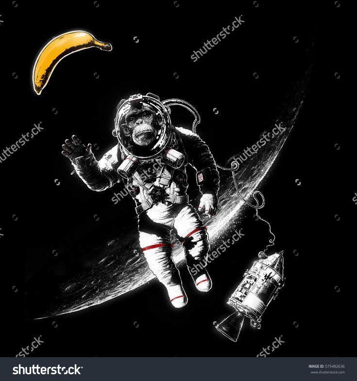 Hand drawn conceptual cartoon / comics illustration of a Space Monkey reaching for a Banana while space walking out of a space shuttle orbiting the Moon.