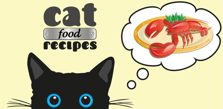 Cat food recipes App